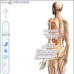 New Google browser to map human body!