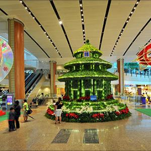 IMAGES: World's most STUNNING airports