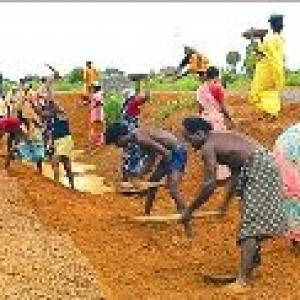 NREGA wages to be hiked