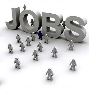 New Year cheer in job street, hiring rises across sectors