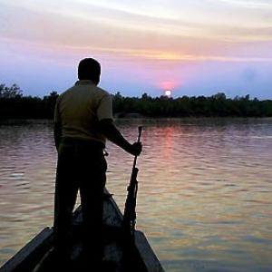 Sunken oil tanker threatens the Sundarbans