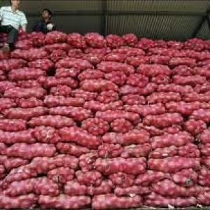 Farmers take a hit as onion prices fall further