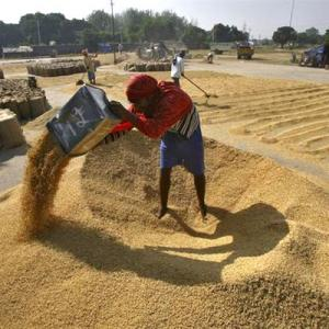 India to not compromises on food security at WTO talks