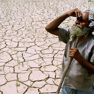 34 farmers, farm hands committed suicide every day in 2014