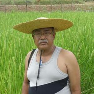 What other farmers can learn from Manipur's Devakanta