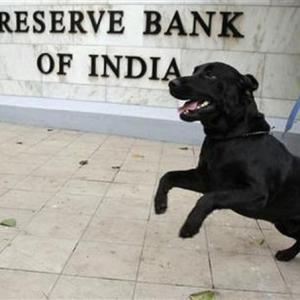 RBI tells PNB to pay up LoU dues to other banks