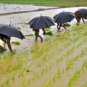 In a relief to farmers, Skymet predicts normal monsoon