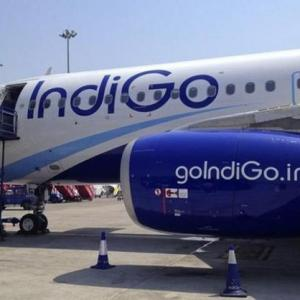IndiGo no more in race to buy Air India
