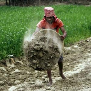 Will MGNREGA end up subsidising private farm labour?