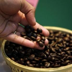 Coffee prices up 10.1%; trend likely to continue