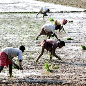 RSS outfit: 'Farm law gives corporates upper hand'