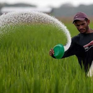 Each farmer may get ffertiliser subsidy of Rs 5K/year
