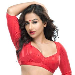 'We padded Vidya Balan in some scenes in The Dirty Picture'