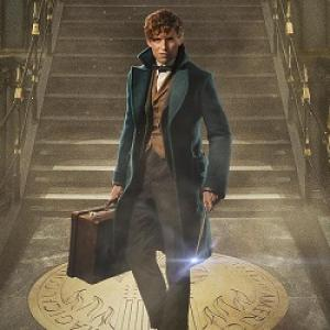 Fantastic Beasts and Where to Find Them Review:The magic is back!