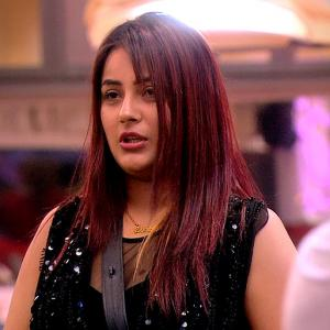 Bigg Boss 13: Are Shehnaaz-Sidharth an item?