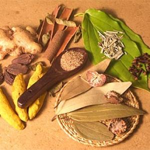 'Ayurveda needs more evidence-based approach'
