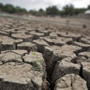 Maha drought: Scams to poor planning, contributors aplenty