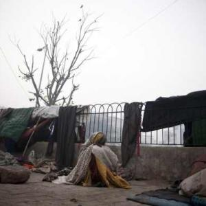 164 people have died of cold in Delhi so far