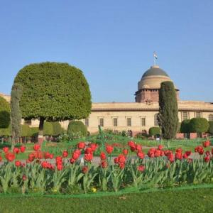PIX: Prez's Mughal Garden is in full bloom and you are invited