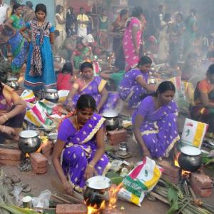 How Dharavi transformed into mini Tamil Nadu on Pongal