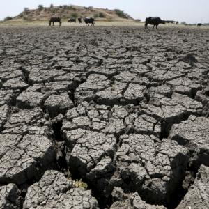 Centre's responsibility to warn states on drought: SC