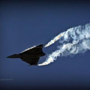 PHOTOS: India's Tejas flexes its muscles at Bahrain air show