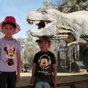 PHOTOS: Following in a dinosaur`s footsteps
