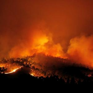 PHOTOS: Massive Portugal forest fire kills 57, injures 59 others