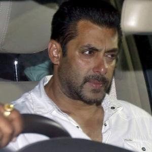 All you need to know about Salman's blackbuck case