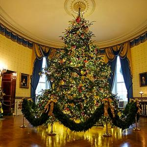 PHOTOS: Christmas with the Trumps at the White House