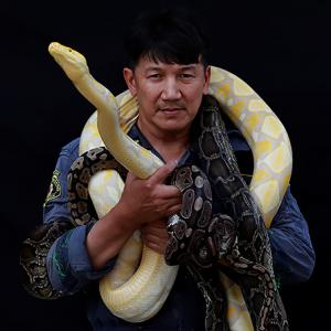 The firefighter who catches snakes with his bare hands