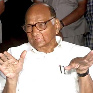 Mandate to sit in Oppn but...: Pawar after meeting Sonia