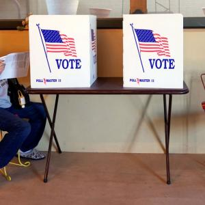 US polls saw highest voter turnout rate in 120 years