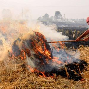 18% of Delhi's air pollution due to stubble burning