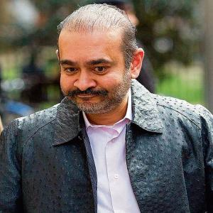 Is Nirav Modi a Suicide Risk?