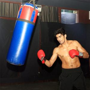 Nothing comes easy in boxing: Vijender Singh