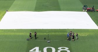 The pitch will have something for everybody, says Adelaide curator