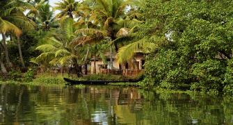 Kerala pics that look nothing short of magical
