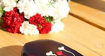 V-Day recipe: How to make a chocolate truffle cake