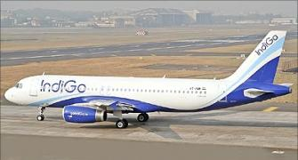 The amazing rise of IndiGo