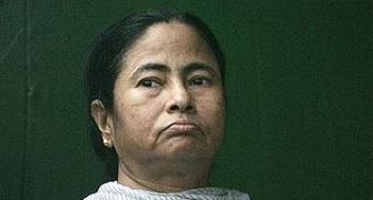 Why Mamatadi must own up Saradha responsibility