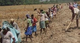 Why NREGA workers got Re 1 per day!