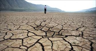 Drought looms in Maharashtra; What were the politicians doing?