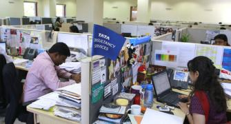 TCS market value crosses Rs 5 lakh cr; shares hit 52-week high
