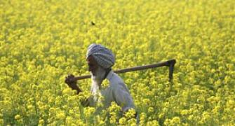 Open to making more changes in land bill: Govt