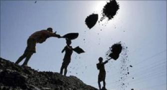 CIL to pay special dividend if stake sale fails: Economist