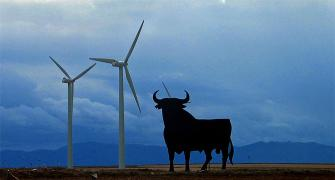 'In 5 years, India will become a major wind energy hub'