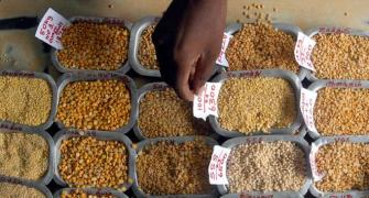 Why are pulses getting so expensive?