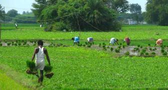Still a long way for women to inherit land