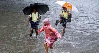 Monsoon to be 'healthy normal' this year: Skymet